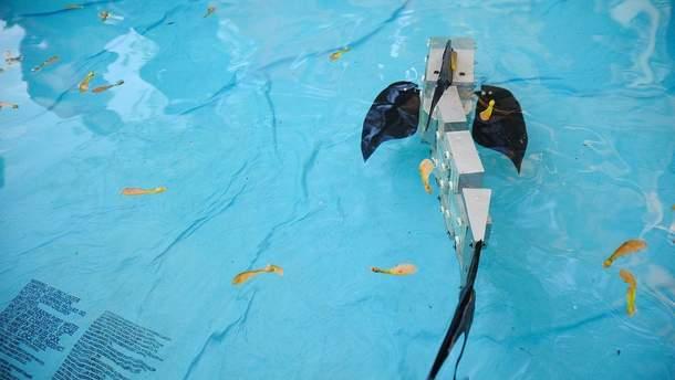 Старша модель робота-риби