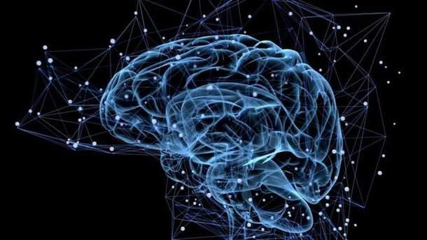 Науковці успішно протестували протез пам'яті для мозку