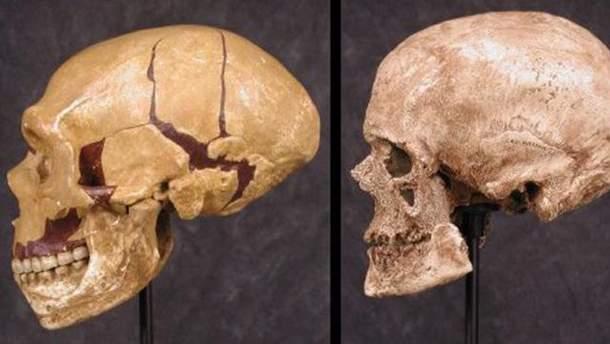 Ученые воссоздали лицо кроманьонца