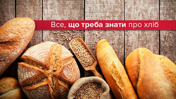 Шкідливий чи корисний хліб
