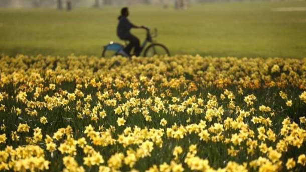 Прогноз погоди в Україні на 3 квітня