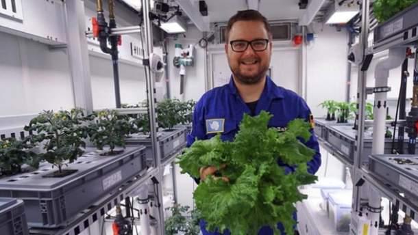 Ученые вырастили овощи без земли