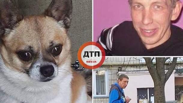 В Киеве мужчина выбросил собаку с 9 этажа дома