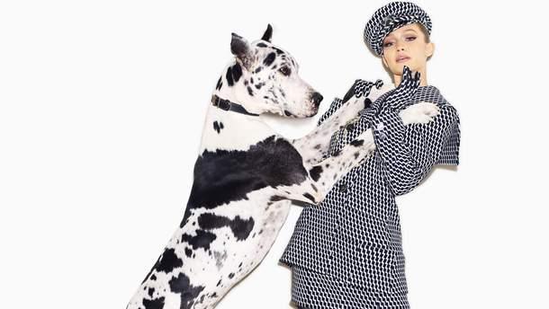 Джиджи Хадид для Harper's Bazaar