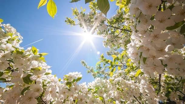 Прогноз погоди в Україні на 13 квітня
