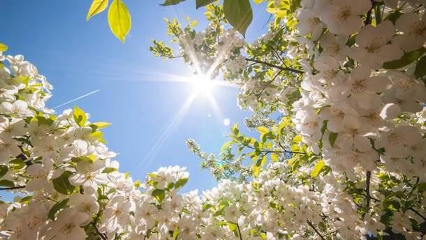 Прогноз погоды в Украине на 13 апреля