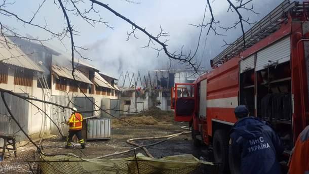 На Закарпатье горел женский монастырь