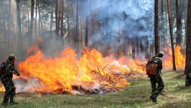 Рятувальники назвали області, де є загроза найвищої пожежної небезпеки.