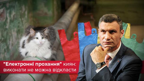 Электронные петиции в Киевсовет: сколько просьб выполнил Кличко?