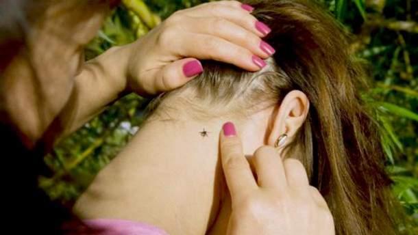 На Львовщине зарегистрировано 16 случаев болезни Лайма