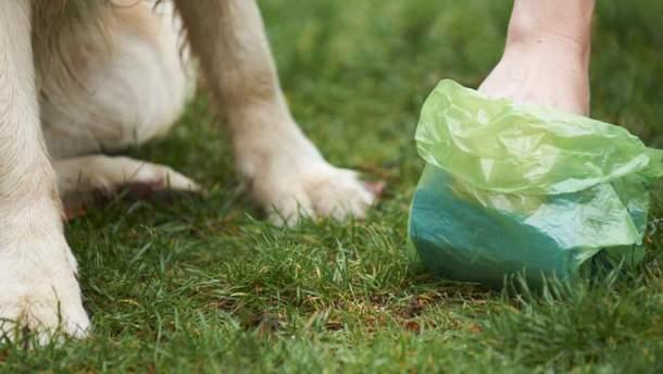 Прибирання за своїм собакою