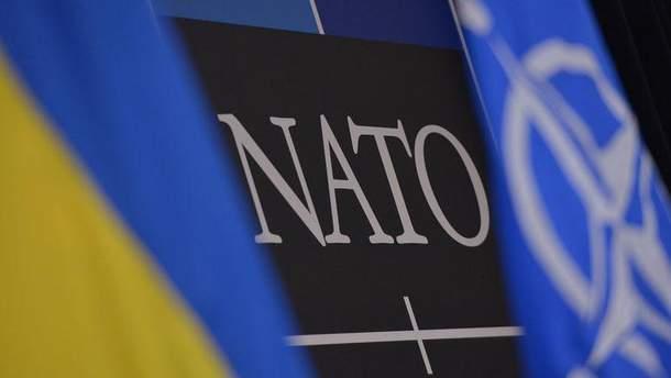 Вступление Украины в НАТО может затянуться