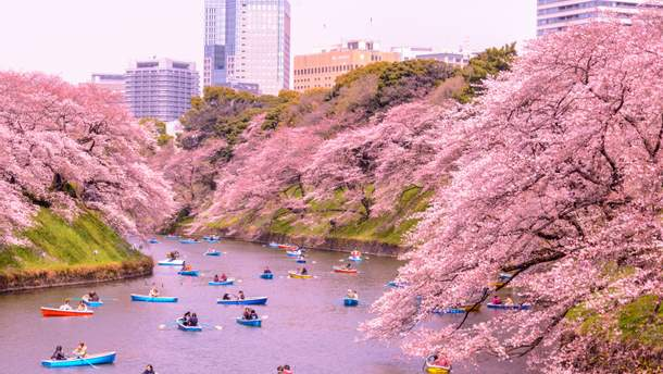 Со следующего года выезд из Японии для туристов будет платным