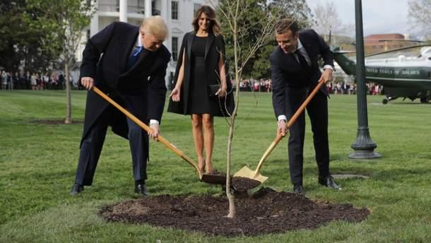 Трамп и Макрон торжественно сажали дуб