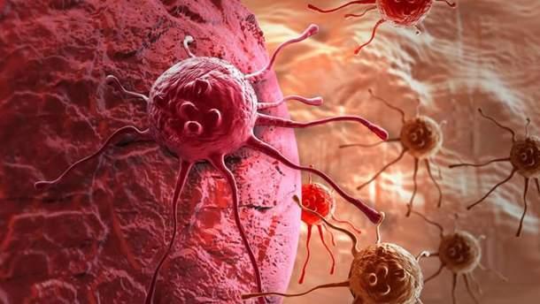 Вчені знайшли спосіб, як боротися зі злоякісними пухлинами