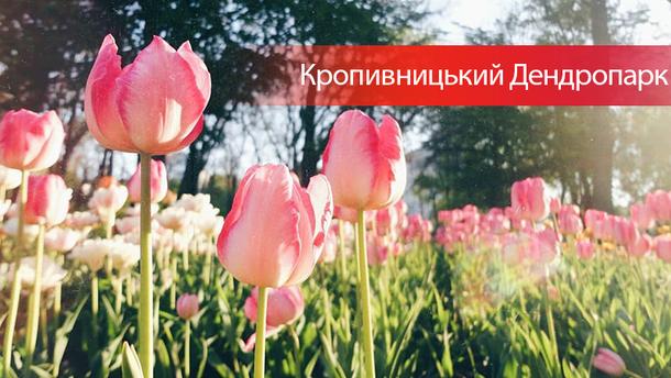 Кропивницкий Дендропарк 2018: лучшие фото из соцсетей