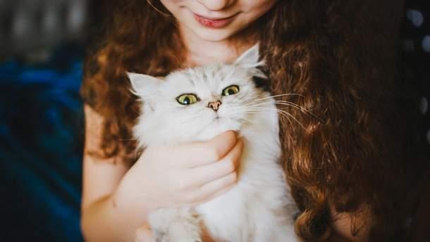 Як відсутність тварин у домі може вплинути на здоров'я