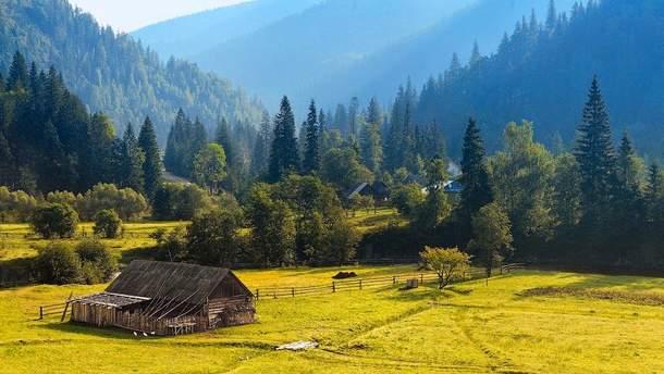 Чиновники намагалися незаконно передати землю в Карпатах під готель