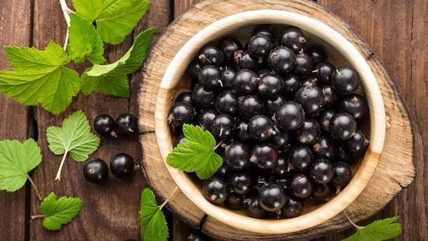 Чем полезна черная смородина для здоровья
