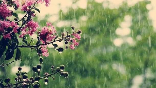 Прогноз погоди в Україні 8 травня