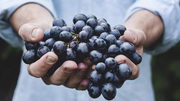 Какие фрукты полезно есть с косточками