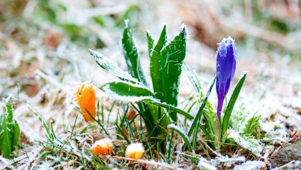 В Украину идут заморозки