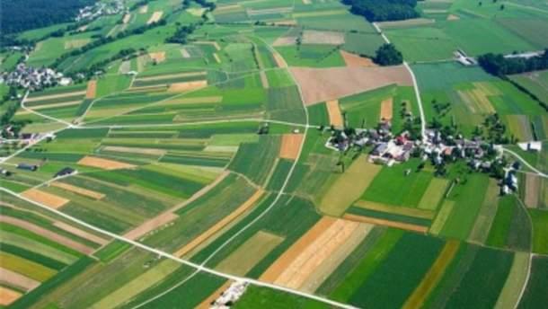 Крупнейшие землевладельцы Украины: список