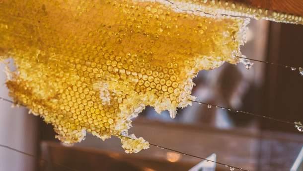 Мед рятує від атеросклерозу