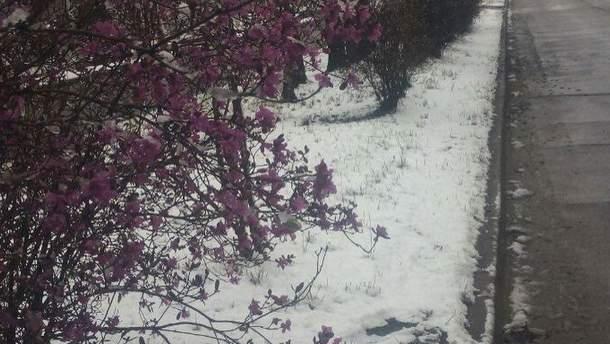 У Росії випав сніг