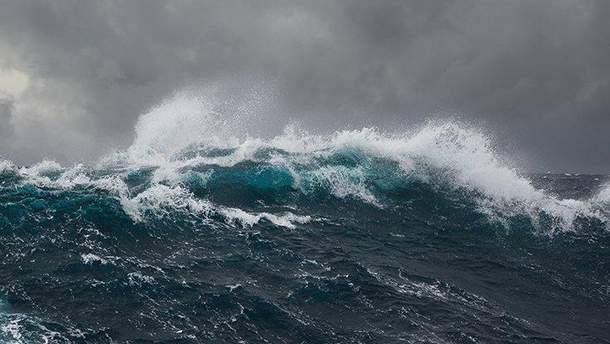 Самую высокую волну на южном полушарии зафиксировали в Новой Зеландии: ее размер поражает