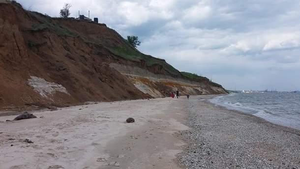На Азовському морі виявили мертвих дельфінів