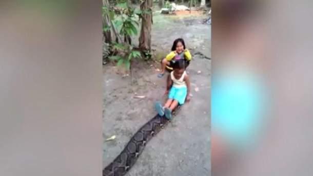 Девочки проехались верхом на спине питона