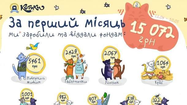 """Сайт """"Котики"""" за месяц заработал 35 000 гривен на благотворительность"""