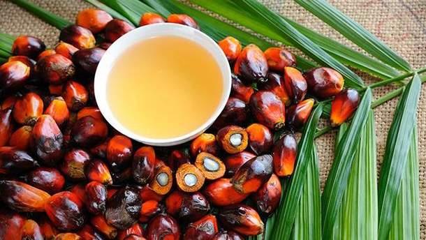 О пользе и вреде пальмового масла