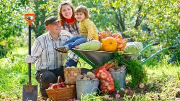 Верховная Рада приняла закон о легализации семейных ферм