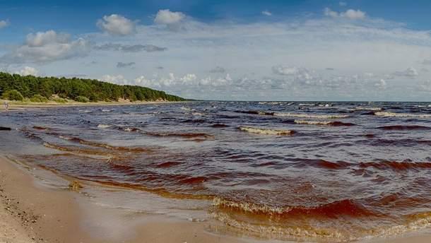 В Эстонии решили сделать границу с Россией на воде более заметной