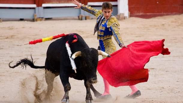 В Испании люди массово протестуют против корриды