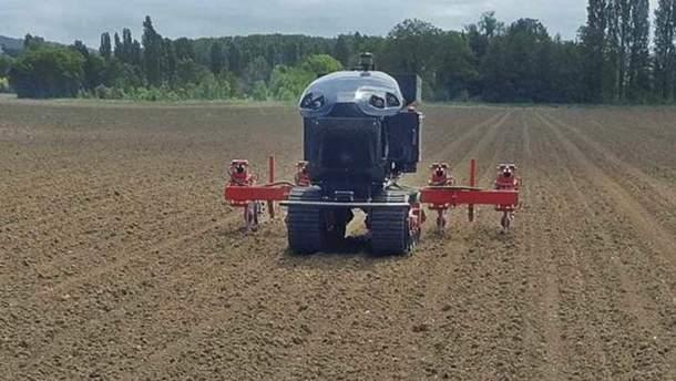Робот для выращивания кукурузы