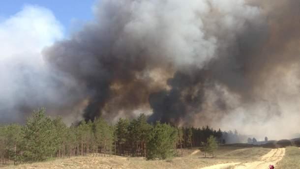 Причина масштабної лісової пожежі на Херсонщині – підпал