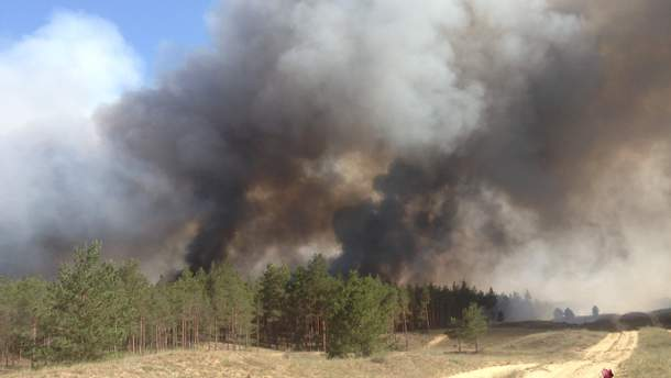 Причина масштабного лесного пожара на Херсонщине – поджог