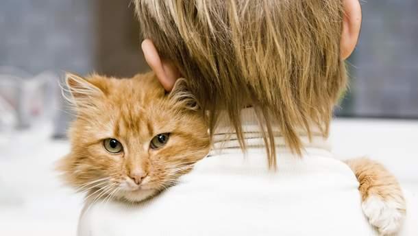 Хто бачить краще: люди чи коти – дослідження вчених