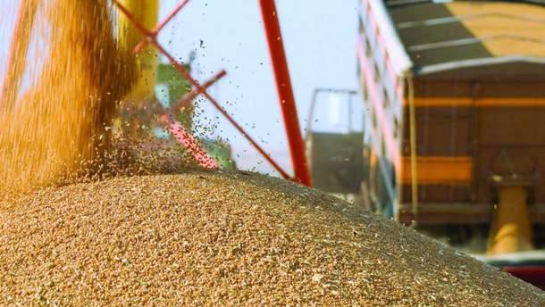 Іран хоче купити в Україні сільгосппродукції на 1,5 мільярди доларів США