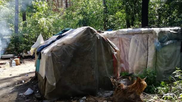 В Киеве табор ромов захватил городской парк