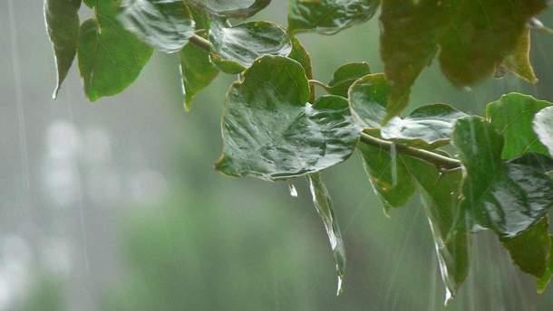 Погода на 12 червня: на Україну насуваються зливи, сухо – лише на Півдні та Сході