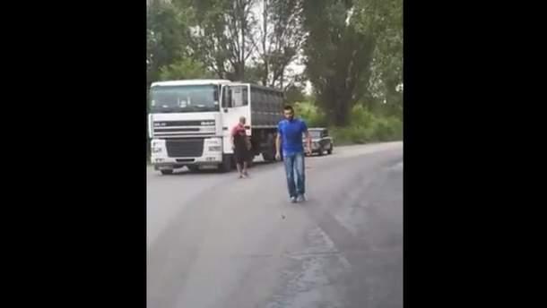 В Кривом Роге водители остановили движение ради спасения птенца фазана