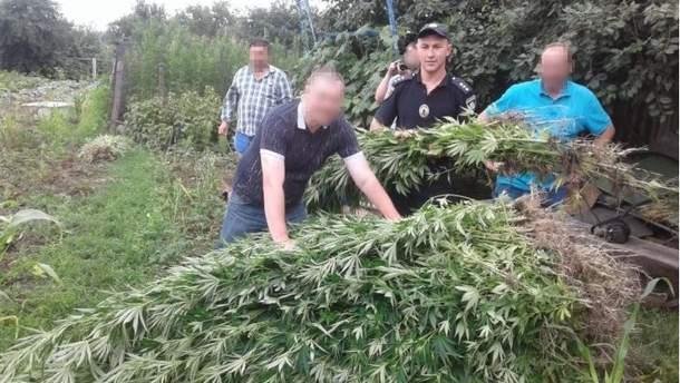 Правоохоронці зазначають, що під час огляду господарства жінки на городі виявили 1053 рослини конопель