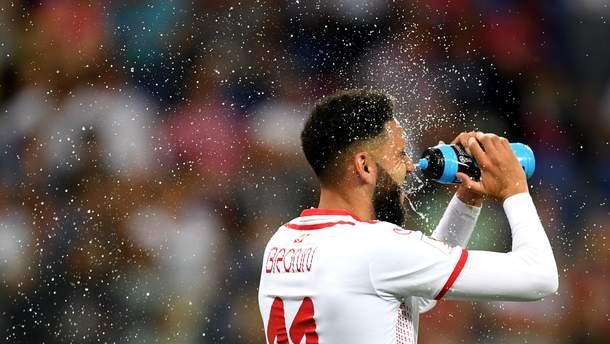 Матч ЧМ-2018 Тунис – Англия атаковали насекомые