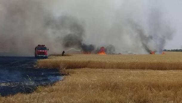 В Николаевской области огонь уничтожил 4,5 гектаров пшеницы