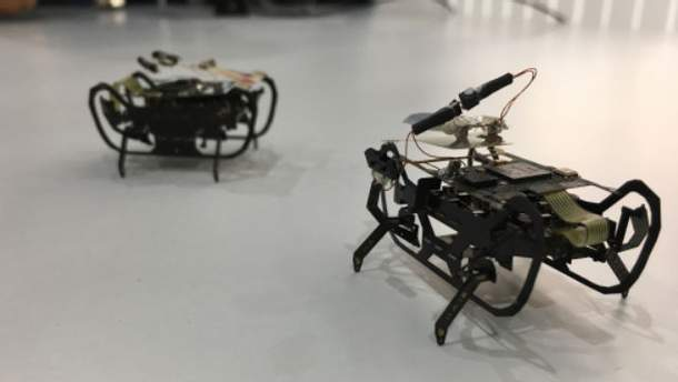 Роботы-тараканы