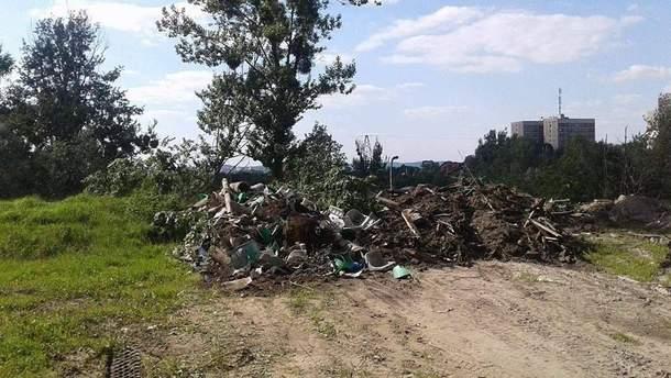 В одном из парков Львова устроили мусорную свалку